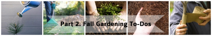 Part 2. Fall Gardening To-Dos