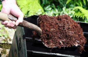 Mulching Your Garden for Spring