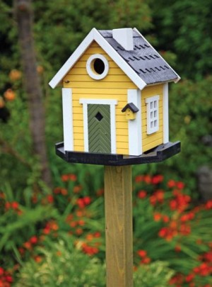Build A DIY Birdhouse